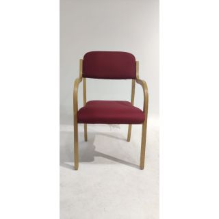 Visitor Chair (DNA 029)