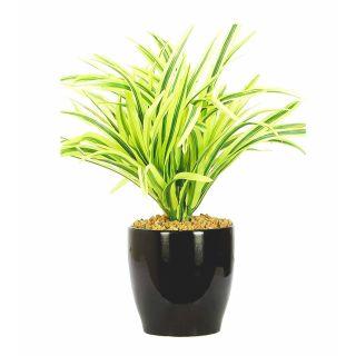 Artificial Green Color Drecena Bonsai Tree (105)