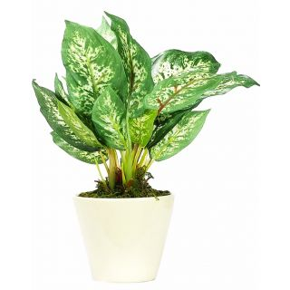Artificial Green Color Diffenbachia Bonsai Tree (103)