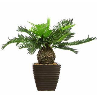 Artificial Green Color Cycus Bonsai Tree (106)